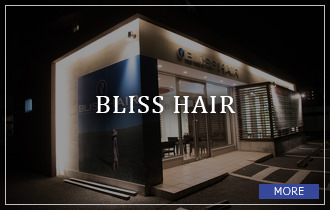 BLISS HAIR BLOG